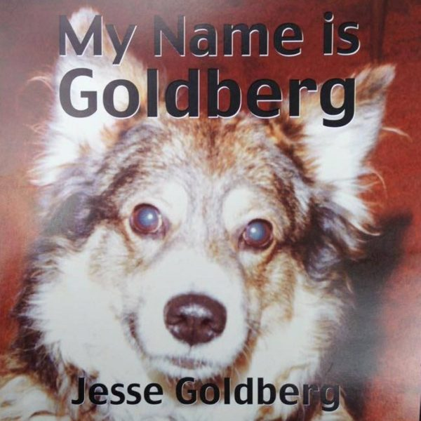 Jesse Goldberg - My Name Is Goldberg - Album Cover