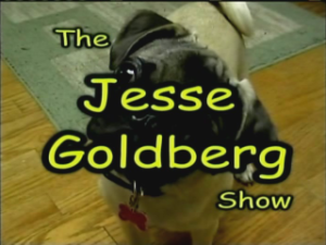 The Jesse Goldberg Show on NECAT Network