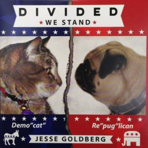 Jesse Goldberg | Divided We Stand | CD